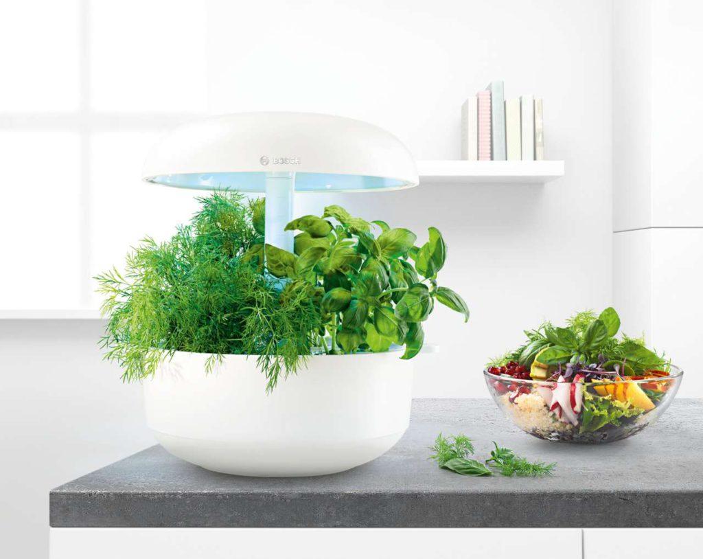 Nährstoffreichere, schmackhaftere und frischere Kräuter dank einem patentierten Licht- und Bewässerungssystem. Foto: Bosch